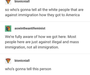 funny, immigration, and irony image