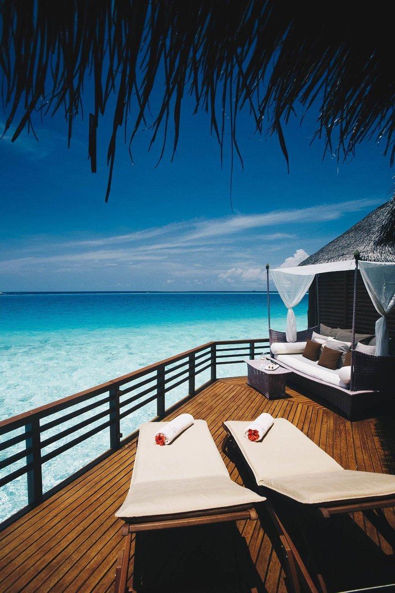 Island, trips, and Maldives image