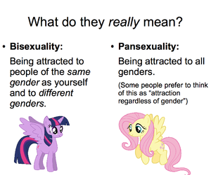bisexuality and pansexuality image