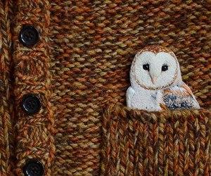 eagle, owl, and sweater image