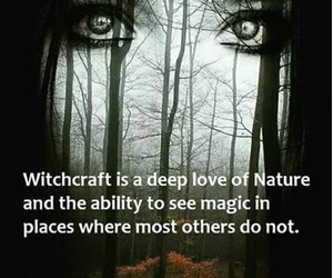 magic, witch, and woods image