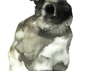 animal, ink, and water image