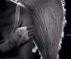 angel, b&w, and black and white image