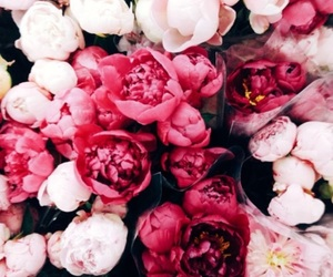 beautiful, vintage, and flowers image