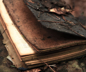 book, old, and autumn image