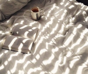 bed, books, and comfort image