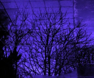purple, tree, and grunge image
