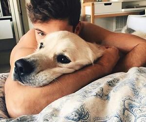 animal, boy, and dog image