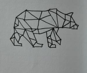 animal, bear, and draw image