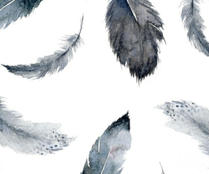 black and white, feather, and patterns image