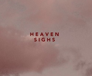 heaven, quotes, and pink image