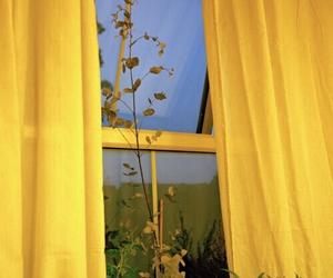 aesthetic, window, and amazing image