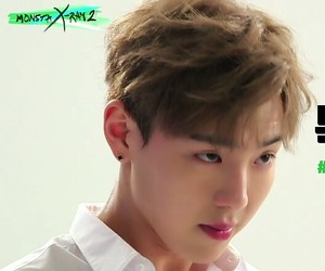 lq, low quality, and shownu image