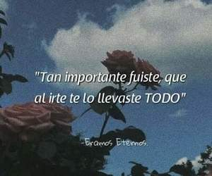 amor, frases, and todo image