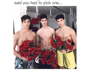 boys, flowers, and roses image