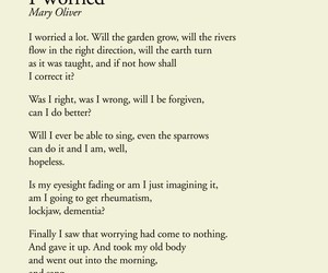 poetry, worry, and mary oliver image