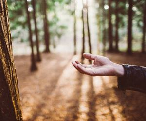 hands, indie, and nature image