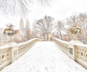 bridge, newyork, and snow image