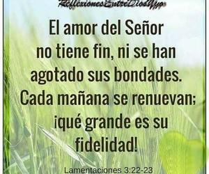 fidelidad and lamentaciones 3 22-23 image