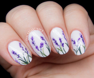 flower, green, and lavender image