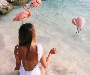 girl, summer, and flamingo image
