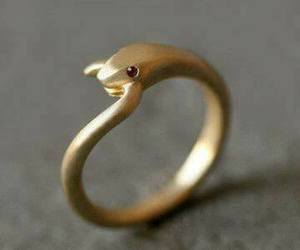 ring, gold, and snake image