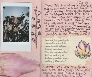 pink, journal, and flowers image