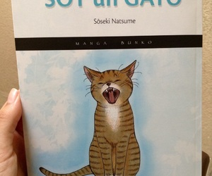 Gatos, libros, and vida image