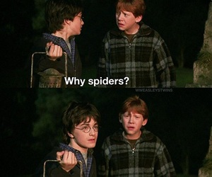 hp, ron, and spiders image