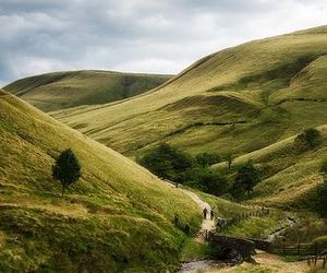 nature, england, and green image