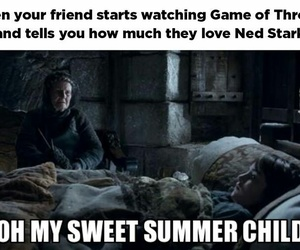 funny, stark, and game of thrones image