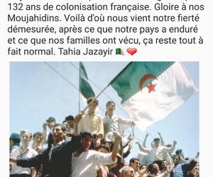 Algeria, dz, and independance image
