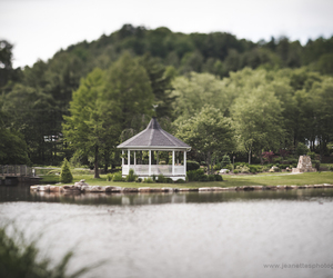 garden, gazebo, and jeanette's photography image
