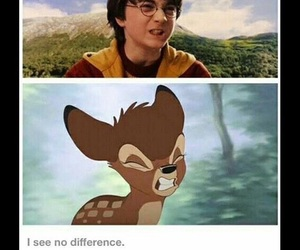 harry potter, bambi, and funny image