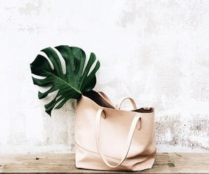 bag, clean, and green image
