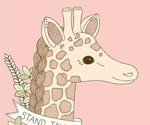 giraffe and pink image