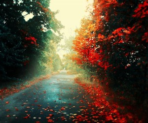 art, autumn, and nature image