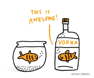 vodka, fish, and awesome image