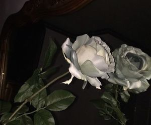 rose, dark, and flowers image