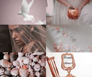 aesthetic, pink, and aphrodite image