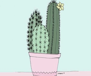 cactus, wallpaper, and verde image