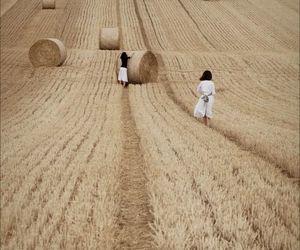 greek, mythology, and harvest image