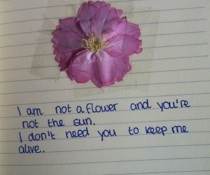 flowers, quotes, and sun image