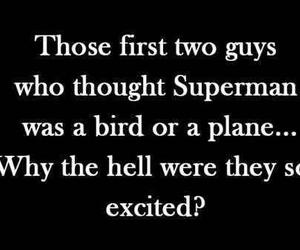 funny, superman, and bird image