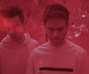 infrared, red, and zedd image