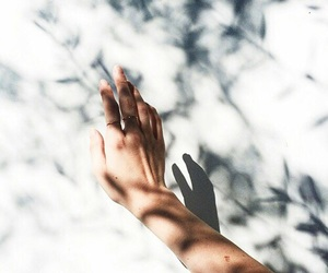 hand, shadow, and photography image