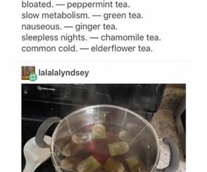 funny, tea, and lol image