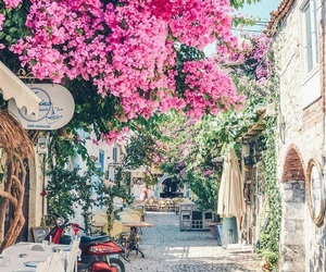 flowers, travel, and turkey image