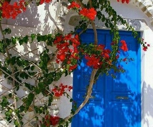 architecture, colors, and flowers image