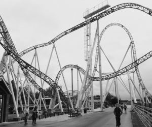 fun, rollercoaster, and together image